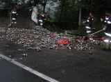 Unfall Innbrücke 2006_1