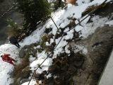 Hangrutsch Birkenweg 23.12.2012_6